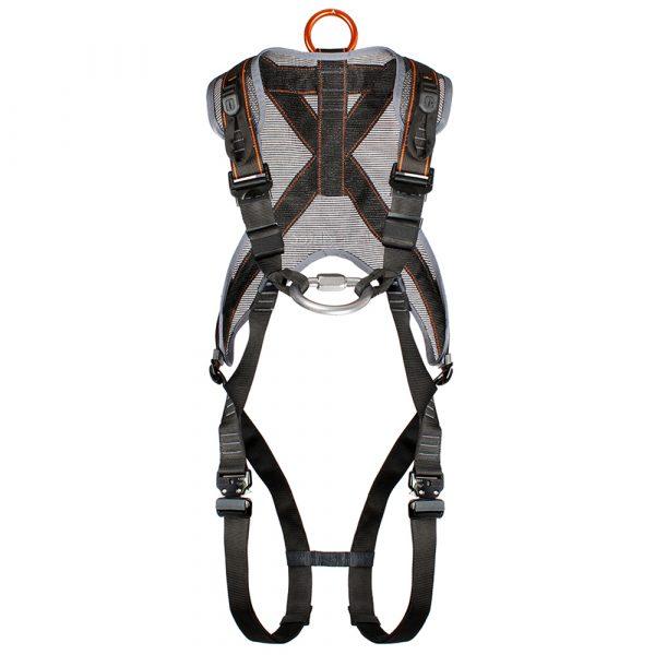 H11Q Phoenix harness-1000x1000