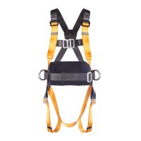 Rigger's Harness